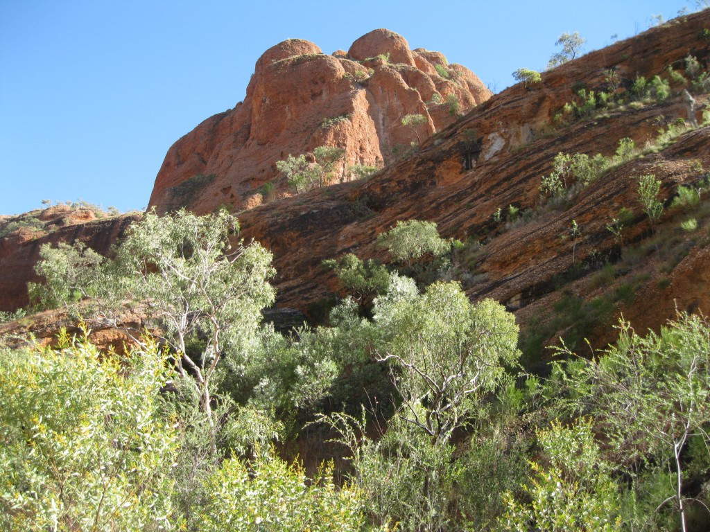 Cross-bedded rock at Echidna Chasm
