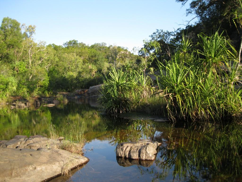 Barramundi Creek at Maguk