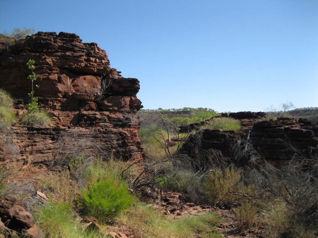 Rugged Rock Scenery on the top of the Escarpment
