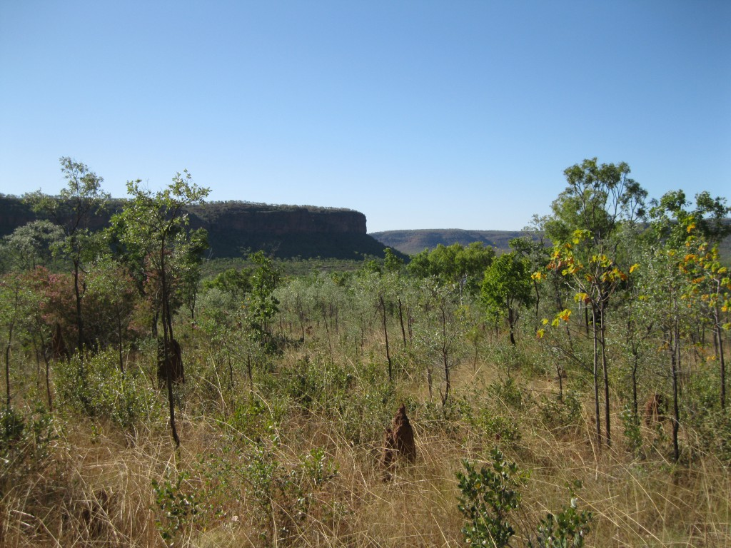 Mountain Ranges and grasslands going down from the Escarpment