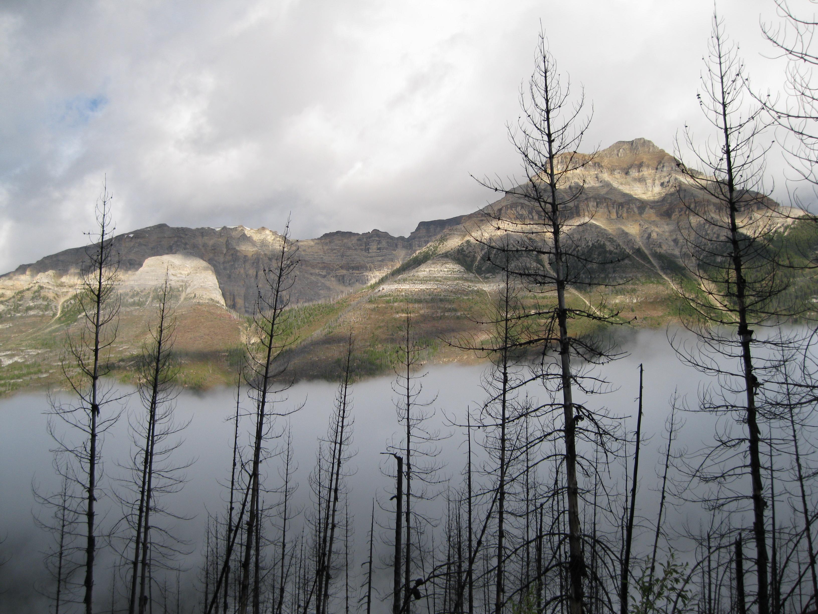 kootenay national provincial park bc images