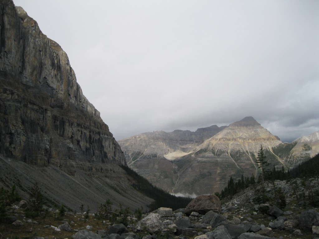 On the Stanley Glacier Trail. Looking down the valley towards Mount Whymper