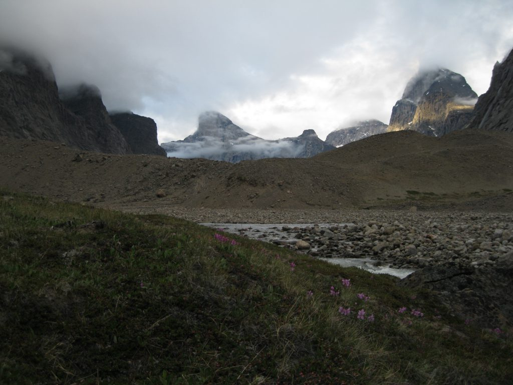 Golden Hour on Peaks around Mount Thor with Dwarf Fireweed, the Weasel River and Windy Lake Moraine in the foreground